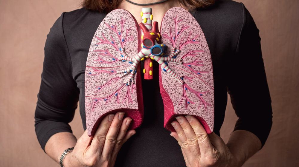 adult-woman-medical-model-human-lungs-stem-cell-treatments-for-lungs-ss-FEATURE-