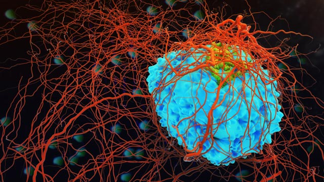 innovations-in-oncology-the-cancer-moonshot-and-beyond-306607