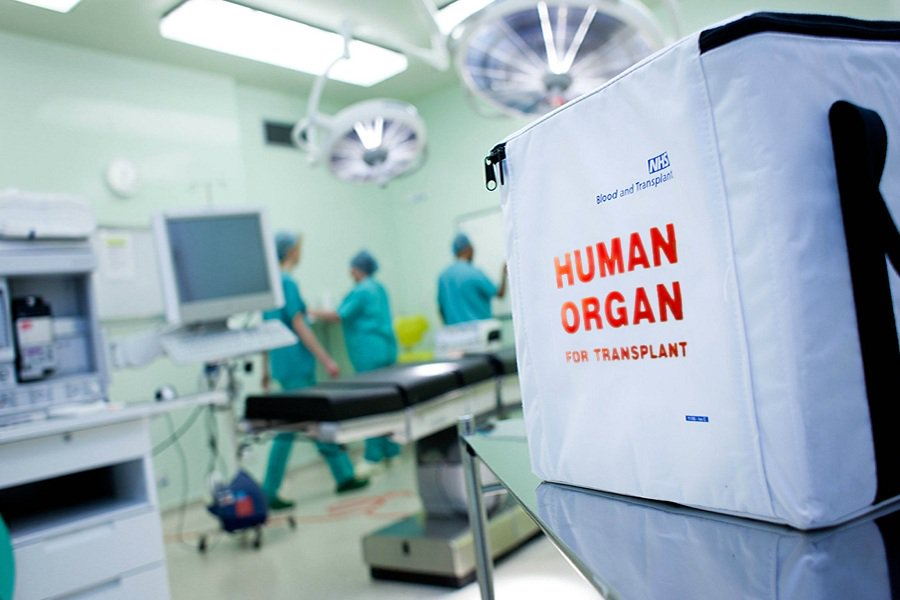 transplant.jpg