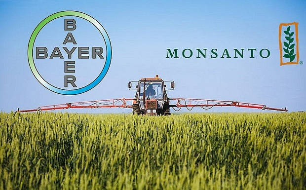 bayer-monsanto_3