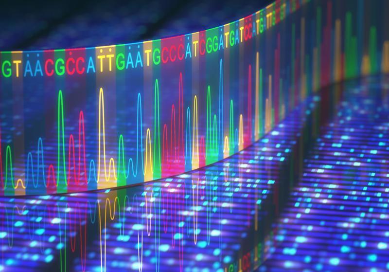 THUMBNAIL_Sanger Sequencing