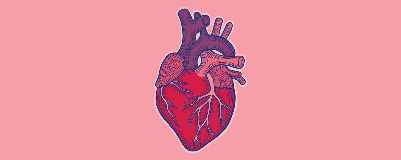ts-heart-1800x720-x