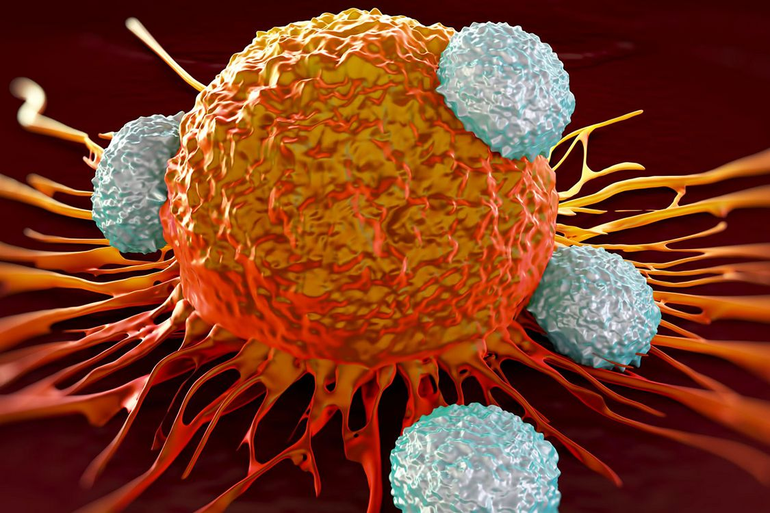 Tcell_immunity_in_cancer