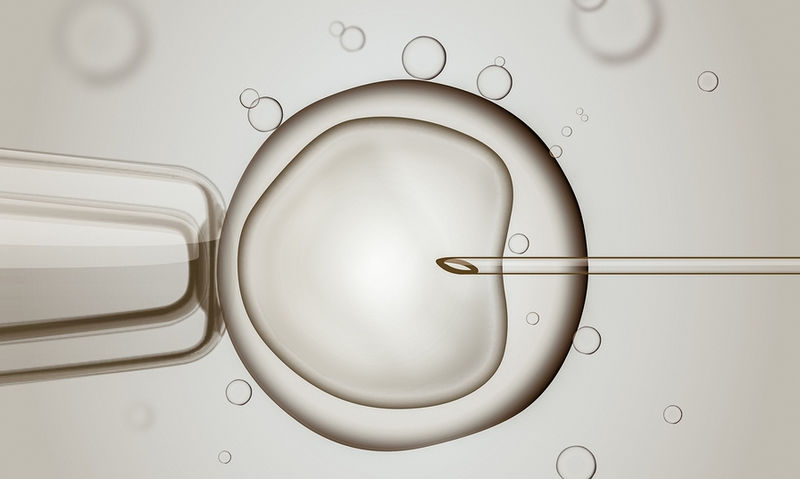 bigstock-Macro-Of-Ivf-in-Vitro-Fertili-138260003