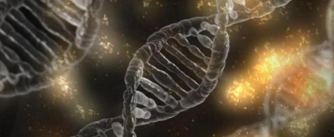 Genes_0