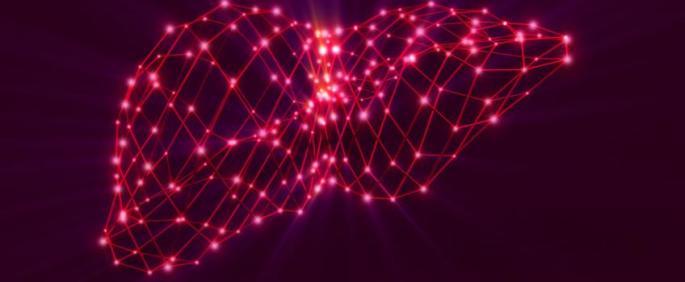 Liver red lights